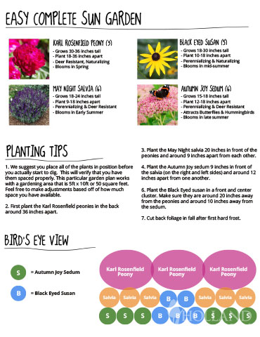 Perennials For Sunny Gardens Easy To Grow Sun Perennials Sunny