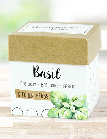 Homemade Herb Kit- Kitchen Basil - 75708
