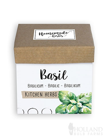 Homemade Herb Kit- Kitchen Basil basil growing kit, indoor herb growing kits, growing kits for herbs, growing basil indoors, basil seeds,