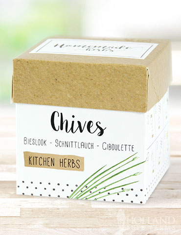 Homemade Herb Kit- Kitchen Chives growing chives indoors, do chives need a lot of sun, are chives easy to grow, how long to chives take to grow indoors, do chives need sun or shade, indoor herb kit, growing kit for herbs, windowsill herb kit