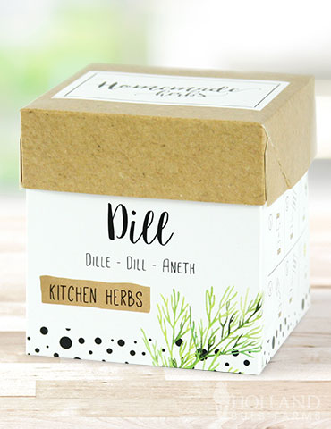 Homemade Herb Kit- Kitchen Dill Growing dill indoors, indoor herb kit, growing herbs indoors, dill seeds, complete growing kit for herbs, indoor growing kit