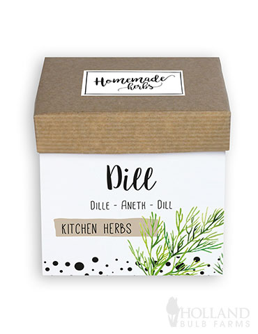 Homemade Herb Kit- Kitchen Dill - 75712