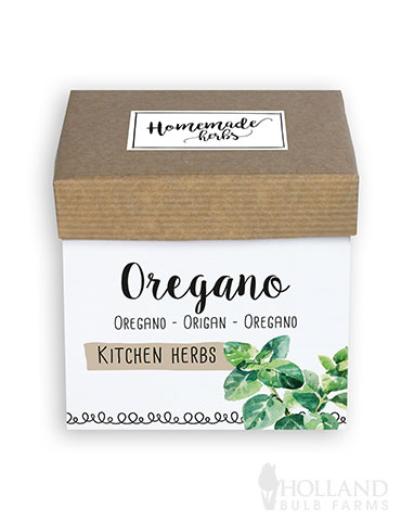 Homemade Herb Kit- Kitchen Oregano indoor herb garden starter kit, oregano herb kit, cooking with oregano, growing oregano, how to grow oregano, diy herb kit, diy oregano, oregano medicinal properties