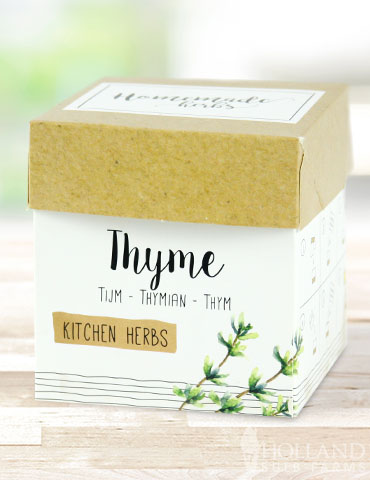 Homemade Herb Kit- Kitchen Thyme cooking with thyme, indoor herb kit, windowsill herb kit, growing herbs indoors, thyme herb kit, herb garden kit, indoor herb garden starter kit, best herbs for growing indoors