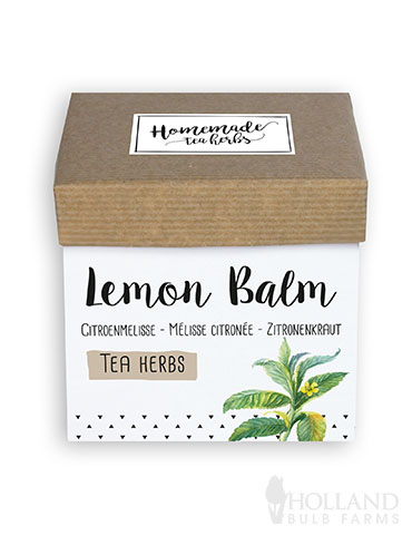 Homemade Herb Kit- Tea Lemon Balm indoor herb kit, indoor herb garden, lemon balm, lemon balm seeds, lemon balm herbs, melissa officinalis, lemon balm plant uses, growing lemon balm in pots
