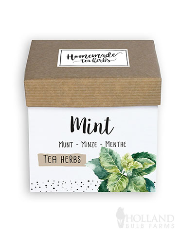 Homemade Herb Kit- Tea Mint kitchen herb kit, indoor herb kit, herbs for tea, mint seeds, peppermint seeds, growing mint indoors, mint herb kit, indoor herb garden kit, indoor mint garden kit