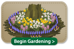 Beginner Gardens that are easy to grow and maintain