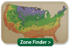 find your hardiness zone