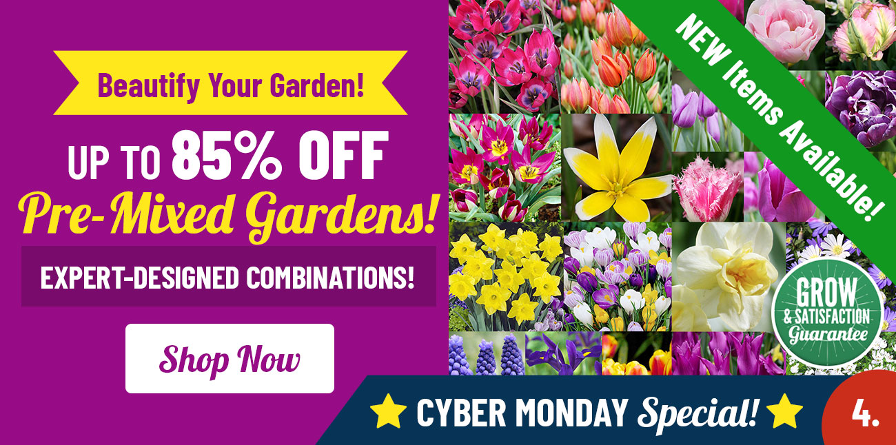 Shop Up To 85% OFF Pre-Mixed Gardens!
