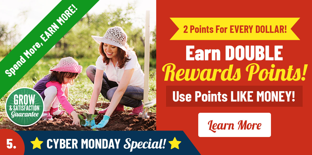 Earn 2X Flower Rewards Points