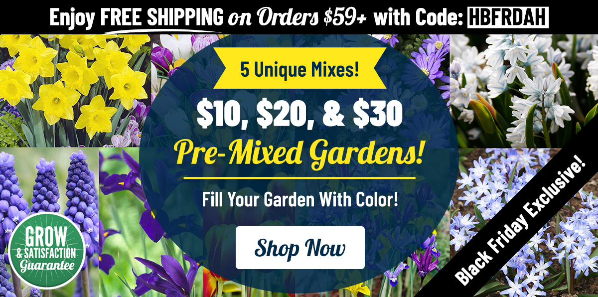 BLACK FRIDAY: $10-20-30 Pre-Mixed Gardens!