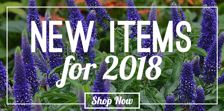 New Plants For 2018!